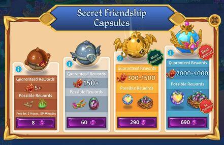 Secret Friendship Capsule