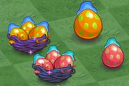 Basket Dragon Nests