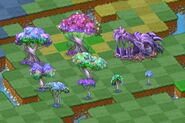 All-glowing-dragon-trees