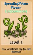 SproutingPrismFlower