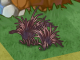 Necromancer Grass