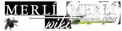 Merlí Wiki
