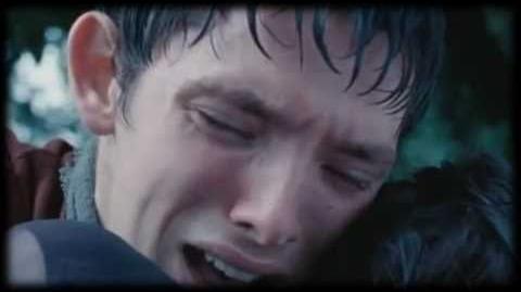 Merlin's Losses I Still Cry