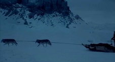Wolves pulling sleigh