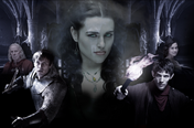 Merlin social network