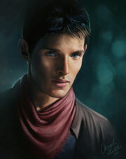 Merlin by angela t-d4g2r15