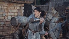 Merlin in chain mail