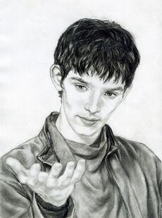 Merlin my drawing
