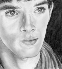Merlin2 my drawing