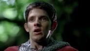 Merlin Knight