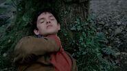 Merlin strangled
