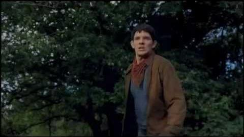 Merlin S5 DVD Box 5