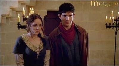 Merlin and sefa