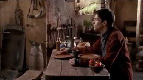 Merlin's Favourite