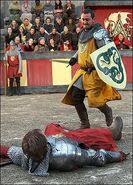 Knight valiants shield 1