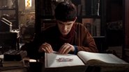 Merlin in the Library