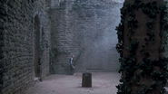 Morgause's enchanted Fortress V