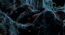 Vlcsnap-2012-04-24-17h34m36s162