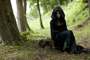 The dark tower morgana