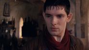 Merlin1913