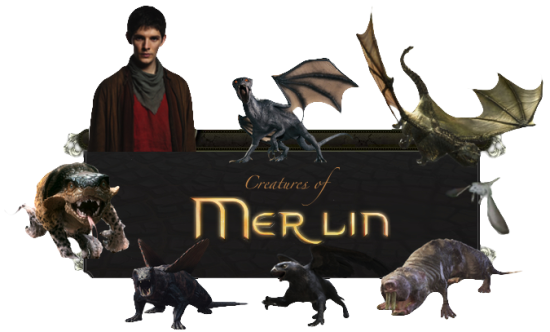550px-Merlin Creatures Plate