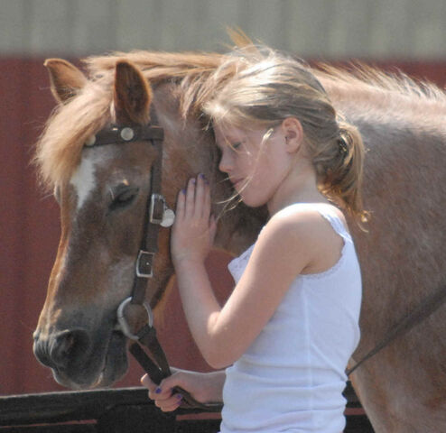 File:Girl hugging horse.jpg