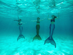 The Three Tails Underwater