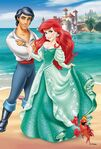 Ariel-and-Eric-ariel-and-eric-34241815-693-1024