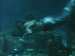 Berengaria Diving