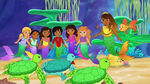 Mermaids and Turtles