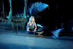 Die Kleine Meerjungfrau 10