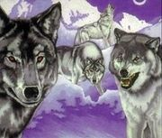 WhiteMountainWolves