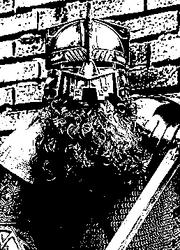 Erebor Dwarf Warrior