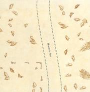 Cirithungolroad