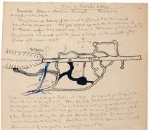 Plan of Shelob's Lair