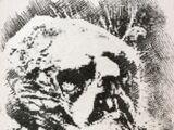 Gorkin the Goblin-King