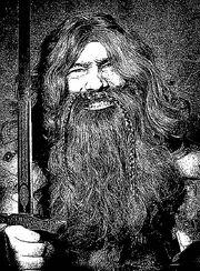 Dwarf-full-beard-with-wig--100002-zwergenbart-zwerg-dwarf-beard-bart