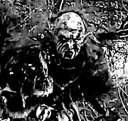 Morgul Orc1