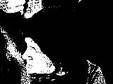 Melmidoc