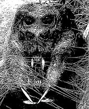 Creepy Mirkwood Spider