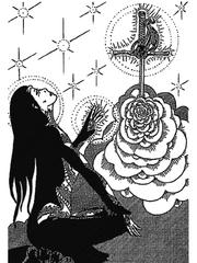 Aranlys