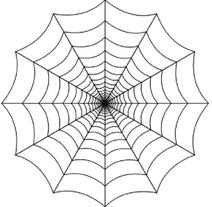 Spidercult