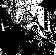 TCG Uruk Warrior