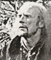 Walt Hollytree