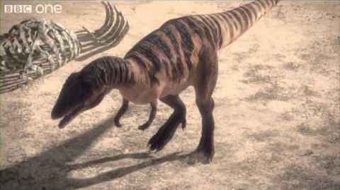 Carcharodontosaurus - Planet Dinosaur - Episode 1 - BBC One