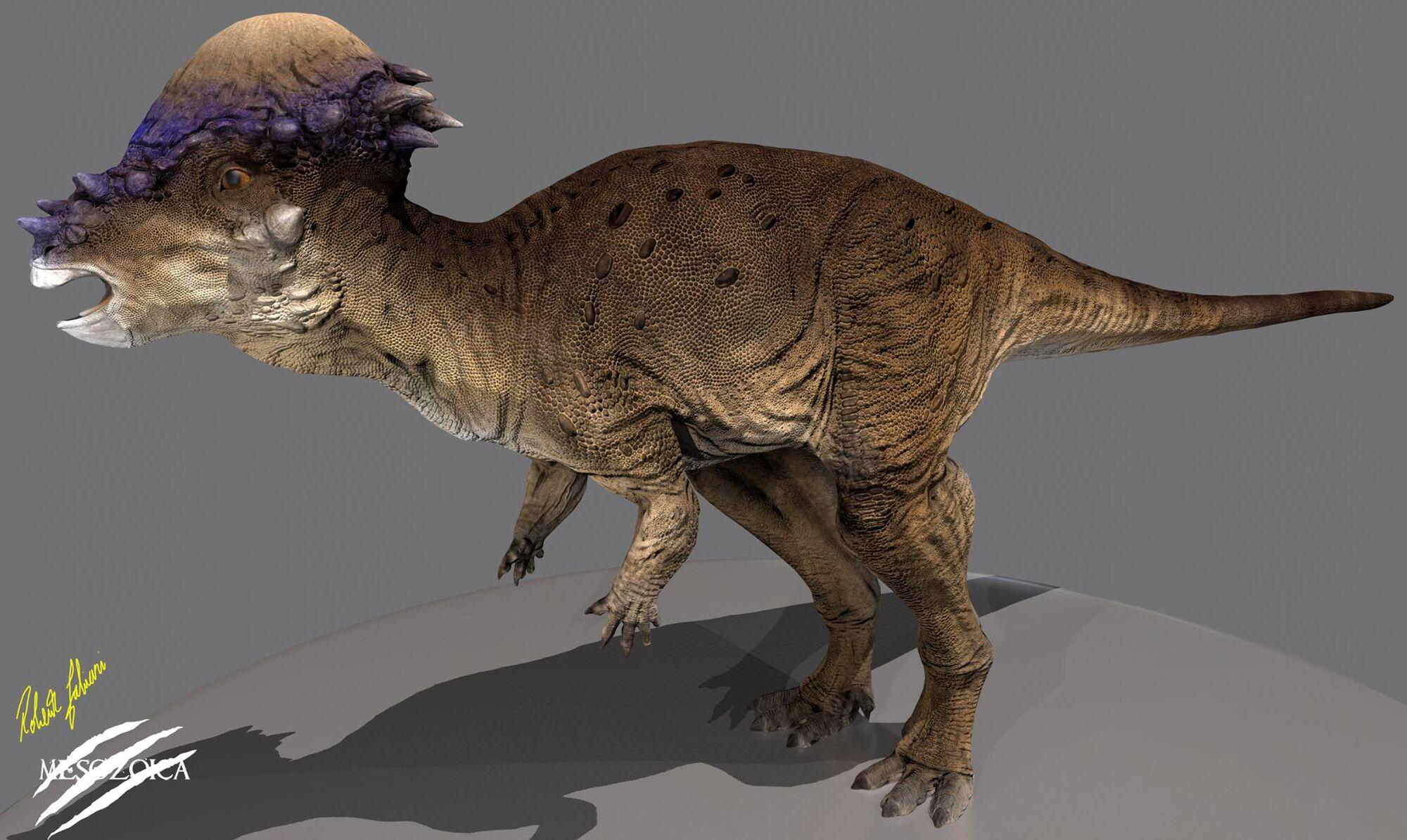 2000 x 1195 jpeg 264kBPurussaurus