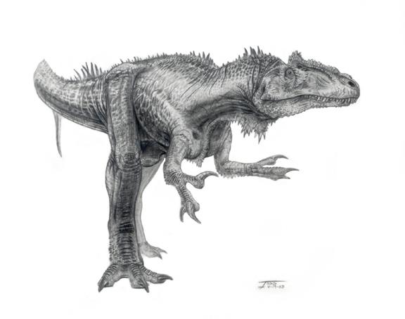 Allosaurus Todd Marshall Jpg