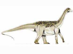 Saltasaurus-1