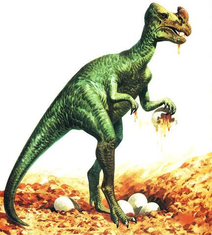 File:Oviraptor-usuarios multimania es .jpg