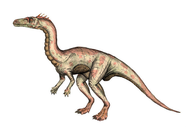 File:Guaibasaurus-maniraptora.jpg